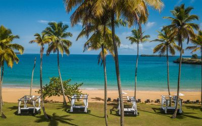 8 REASONS WHY YOU SHOULD TRAVEL TO THE PARADISE OF SAMANÁ